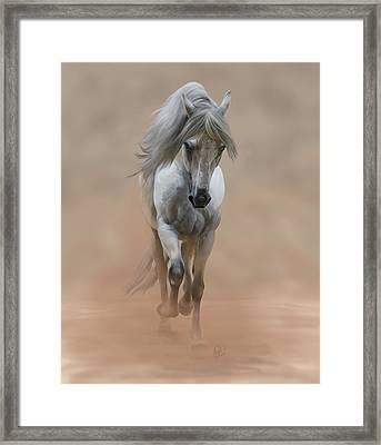 Fino Framed Print by L Oliver