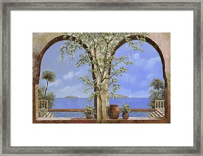 Fiori Bianchi Sulla Parete Framed Print by Guido Borelli