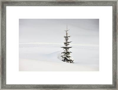 Fir Tree And Lots Of Snow In Winter Kleinwalsertal Austria Framed Print by Matthias Hauser