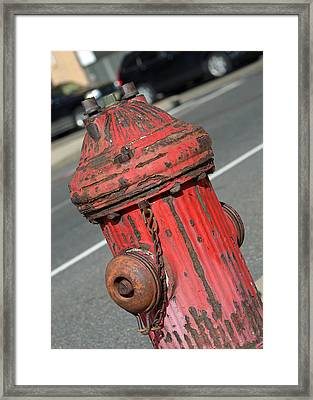 Fire Hydrant Framed Print by Lisa Phillips