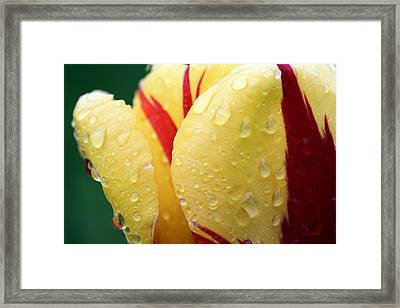 Fire Framed Print by JC Findley