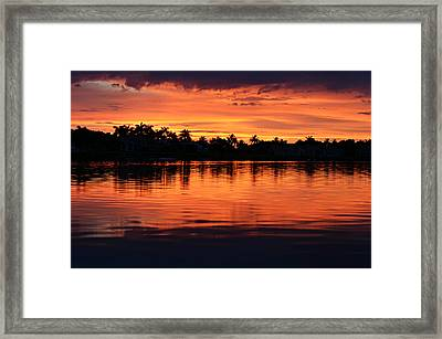 Firewater Framed Print by Laura Fasulo