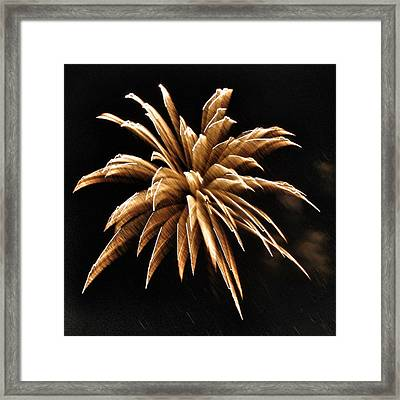 Firework Abstract - Golden Brown Framed Print by Marianna Mills