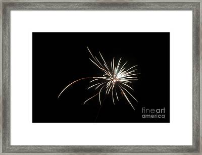 Fireworks 48 Framed Print by Cassie Marie Photography