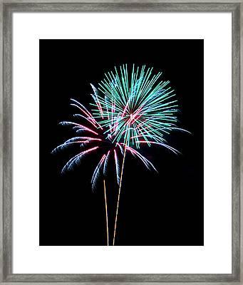 Fireworks Framed Print by Darrin Doss