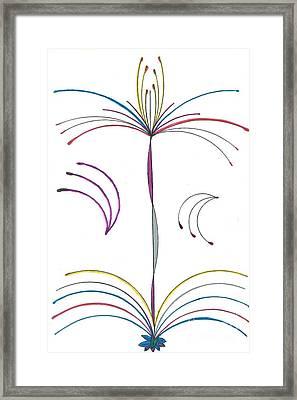 Fireworks Fountain Framed Print by Luke Nelson