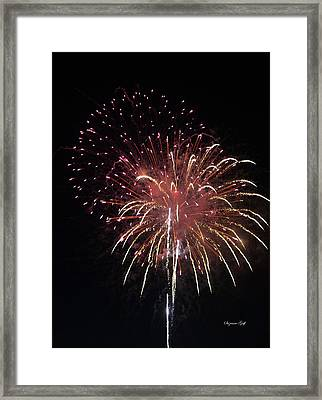 Fireworks Series Xiv Framed Print by Suzanne Gaff