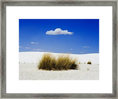 First Contact Framed Print by Skip Hunt