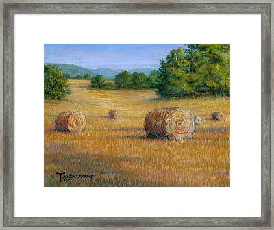First Cut Framed Print by Tanja Ware