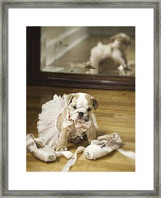 First Dance Framed Print by Lisa Jane