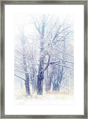 First Snow. Dreamy Wonderland Framed Print by Jenny Rainbow