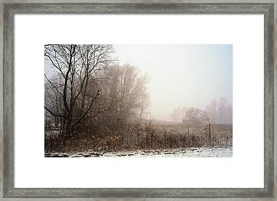 First Snow Of Winter Framed Print by Dick Wood