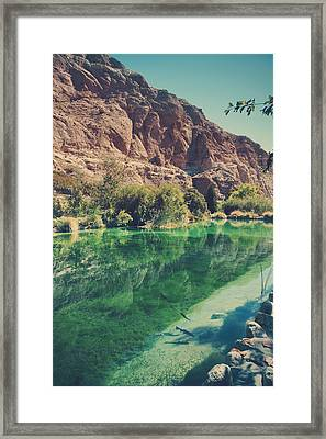 Fish Gotta Swim Framed Print by Laurie Search