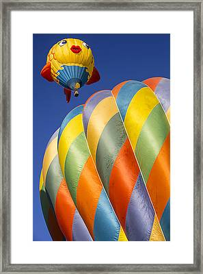Fish In The Sky Framed Print by Garry Gay