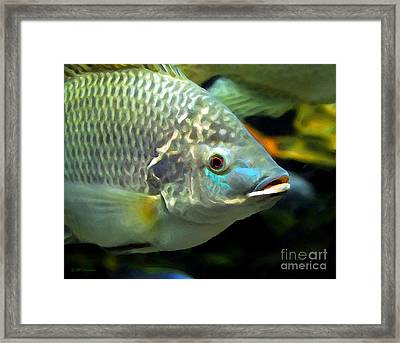 Fish Lips Framed Print by Mel Steinhauer