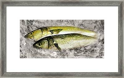 Fish On Ice Framed Print by Diana Angstadt
