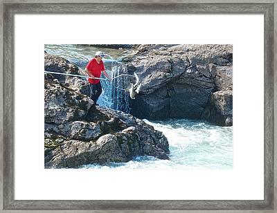 Fish Too Small To Keep So Tossed Back Into The Bulkley River In Moricetown-british Columbia-canada Framed Print by Ruth Hager