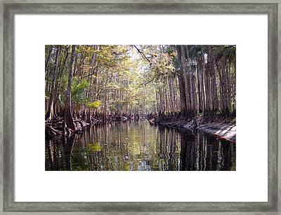 Fisheating Creek Framed Print by Rich Leighton