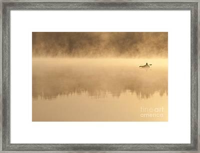 Fisherman In Kayak, Lake Cassidy Framed Print by Jim Corwin