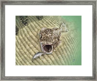Fisherman's Post Flounder Framed Print by Hayden Hammond