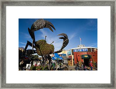 Fishermans Wharf Crab Framed Print by David Smith
