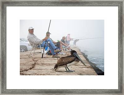 Port Aransas Texas Framed Print by Mary Lee Dereske