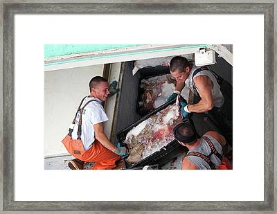 Fishermen Unloading Their Catch Framed Print by Jim West