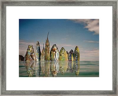 Fishhattan Framed Print by Juan  Bosco