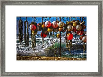 Fishing Buoys Framed Print by Terri Waters
