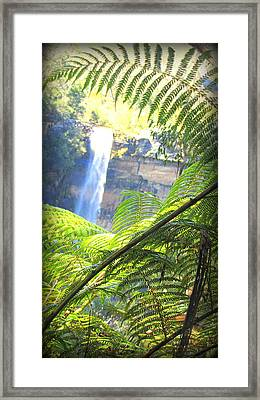 Fitzroy Falls Sydney Framed Print by Henry Adams