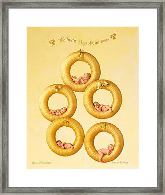 Five Gold Rings Framed Print by Anne Geddes