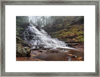 Fl Ricketts Waterfall Framed Print by Lori Deiter