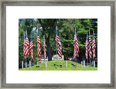 Flag - Illinois Veterans Home - Luther Fine Art Framed Print by Luther  Fine Art