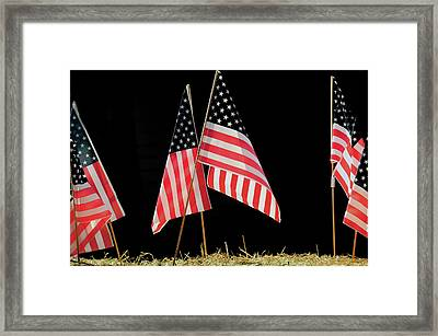 Flags On Float, July 4th Parade Framed Print by Michel Hersen