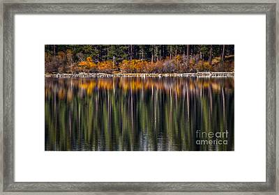 Flames Of Autumn Framed Print by Mitch Shindelbower