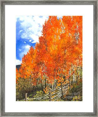 Flaming Aspens Framed Print by Barbara Jewell