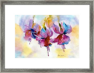 Flaming Fuchsias Framed Print by Pat Yager