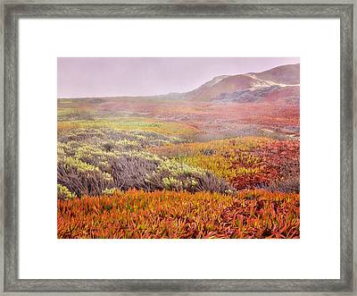 Flaming Ice Framed Print by Caitlyn  Grasso