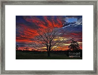 Flaming Oak Sunrise Framed Print by Reid Callaway