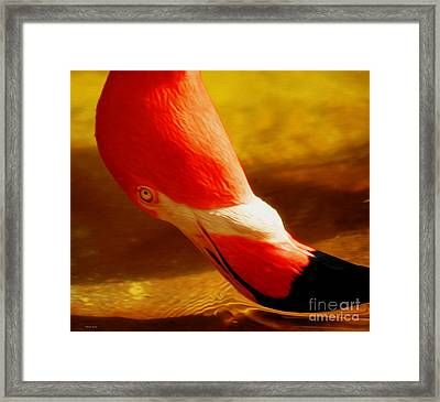 Flamingo Beauty Framed Print by Cheryl Young