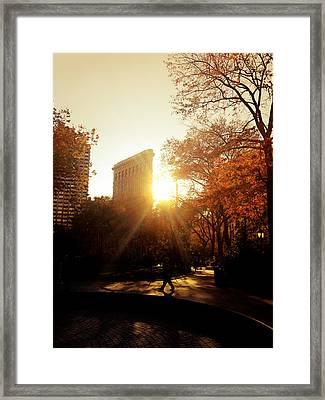 Flatiron Building Sunset - Madison Square Park Framed Print by Vivienne Gucwa