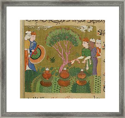 Flavourings And Perfumes Framed Print by British Library
