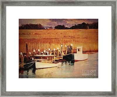 Flemings Landing Delaware Framed Print by Lianne Schneider
