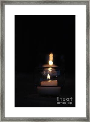 Flicker Framed Print by Barbara Bardzik