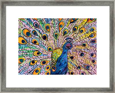 Flirty Peacock Framed Print by Eloise Schneider