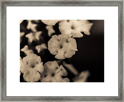 Floating Into The Dark Framed Print by Marco Oliveira