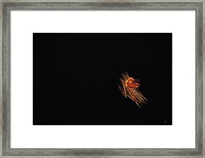 Floating Framed Print by Karol Livote