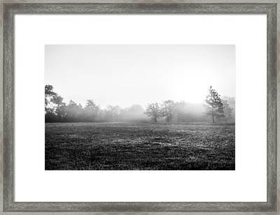 Floating Mist Framed Print by Shelby  Young