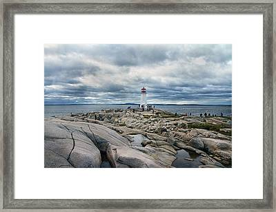 Flocking To Peggy Framed Print by Betsy Knapp