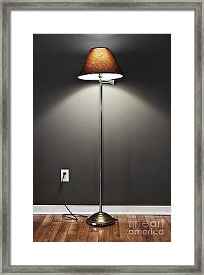 Floor Lamp Framed Print by Elena Elisseeva